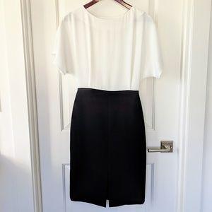 NWOT Mango colorblock dress size 2